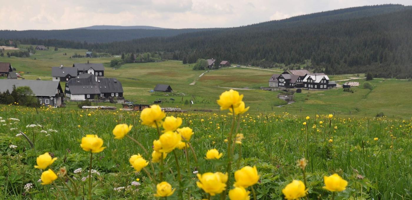 Báječné ubytování v Jizerských horách